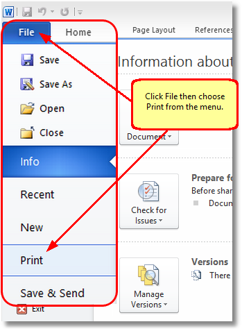 Click File and then choose Print from the menu
