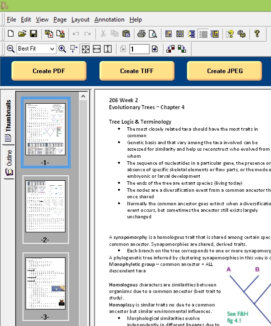 PDF Creator Plus Merge - Word Pages Added